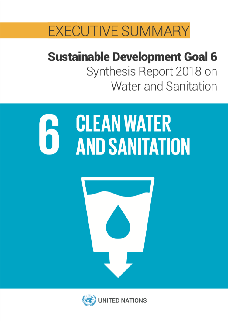 SDG 6 Synthesis Report 2018 on Water and Sanitation